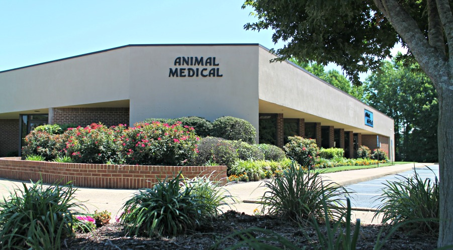 Animal Medical Clinic of Chesapeake 921 Battlefield Blvd 23320