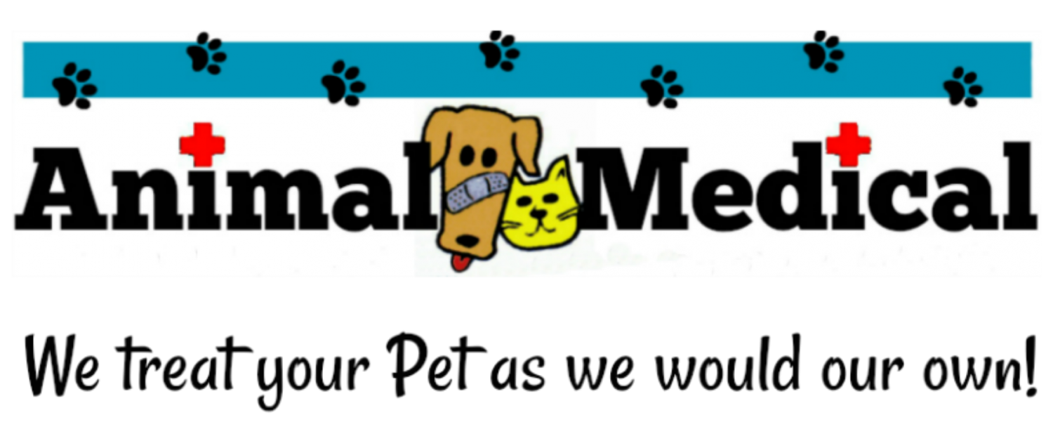 Animal Medical Clinic of Chesapeake 921 Battlefield Blvd, Chesapeake, Va 23320 is a Veterinary Hospital specializing in Fear Free, Pet Friendly care for Dogs and Cats